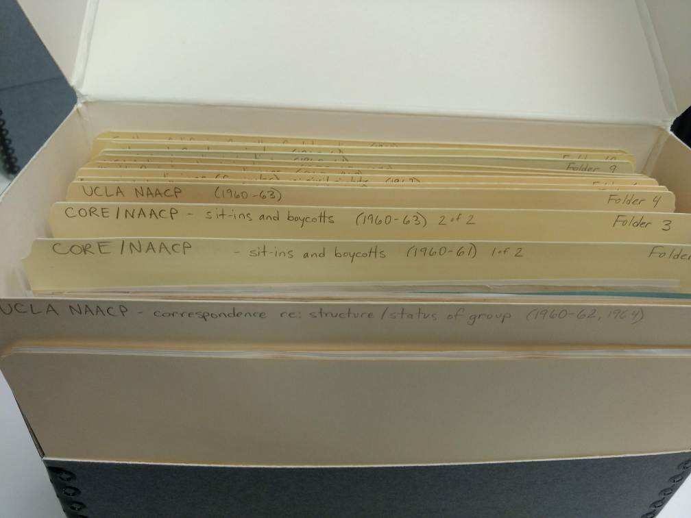 Set of archival file folders