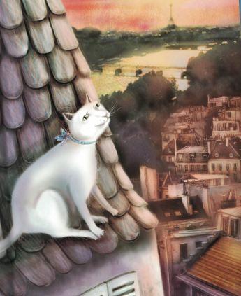 celebrity cat d