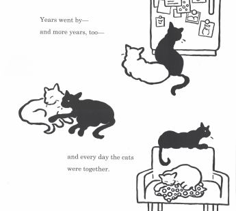 big cat little cat d