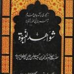 Shawahid un Nabuwat Urdu By Abdul Rehman Jami Pdf