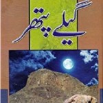 Geelay Pathar Novel By Muhammad Fayyaz Mahi Pdf