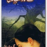 Aye Sitara Shab e Zindagi Novel By Nighat Abdullah Pdf