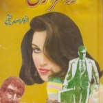 Doosra Rukh Novel By Anwar Siddiqui Pdf Download