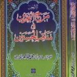 Manaqib Ul Hasnain By Dr Tahir Ul Qadri Pdf