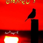 Dhal Gaya Hijar Ka Din Novel By Nadia Ahmed Pdf