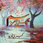 Bicharte Mausam Novel By Kubra Naveed Pdf Download