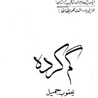 Gum Karda Novel By Yaqoob Jameel Pdf Free