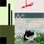 Silah Novel By Aimen Ali Pdf Download Free