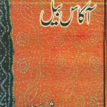 Akas Bail Novel By Shireen Haider Pdf Free