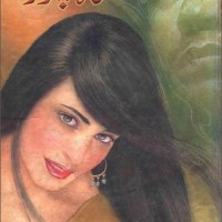 Shah Chor Novel By Aleem Ul Haq Haqi Pdf
