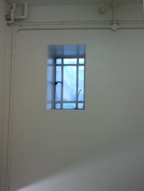 Stairwell window