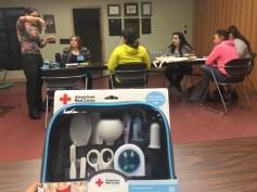 Pediatric First Aid Workshop with a School Nurse