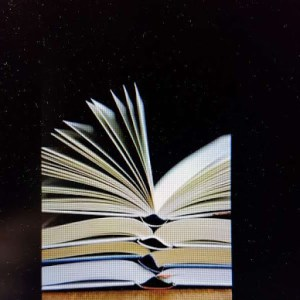 Un livre fait toujours plaisir https://librebonimenteur.net/wgqs