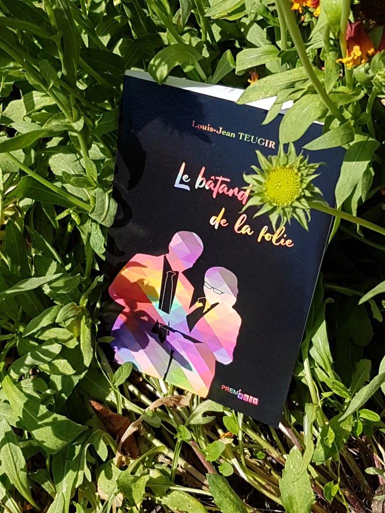 Le bâtard de la folie, un roman de Louis-Jean Teugir