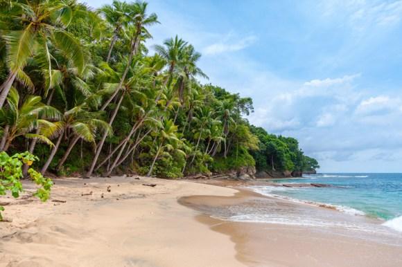 Paraíso en el Caribe