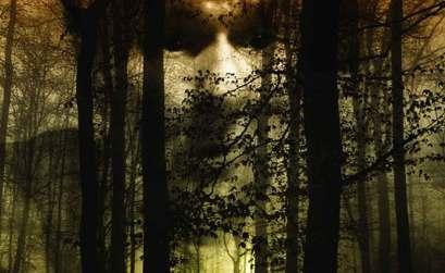 Bestia-Terror en el bosque