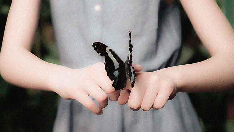 Mariposas, 10ª entrega de A tres pasos de Luna