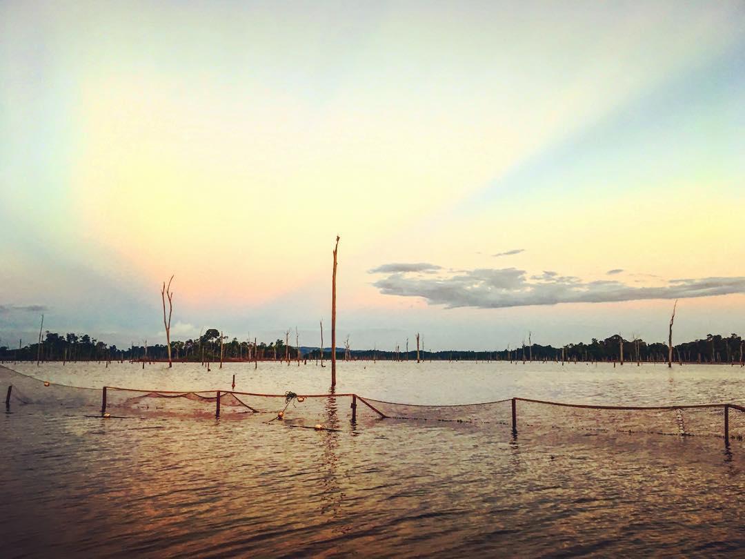Ston-Eiland / Stone Island, Suriname. Le lac de Brokopondo, créé par la construction du barrage d'Afobaka pour la compagnie d'extraction minière et de production d'aluminium américano-australienne Suralco.
