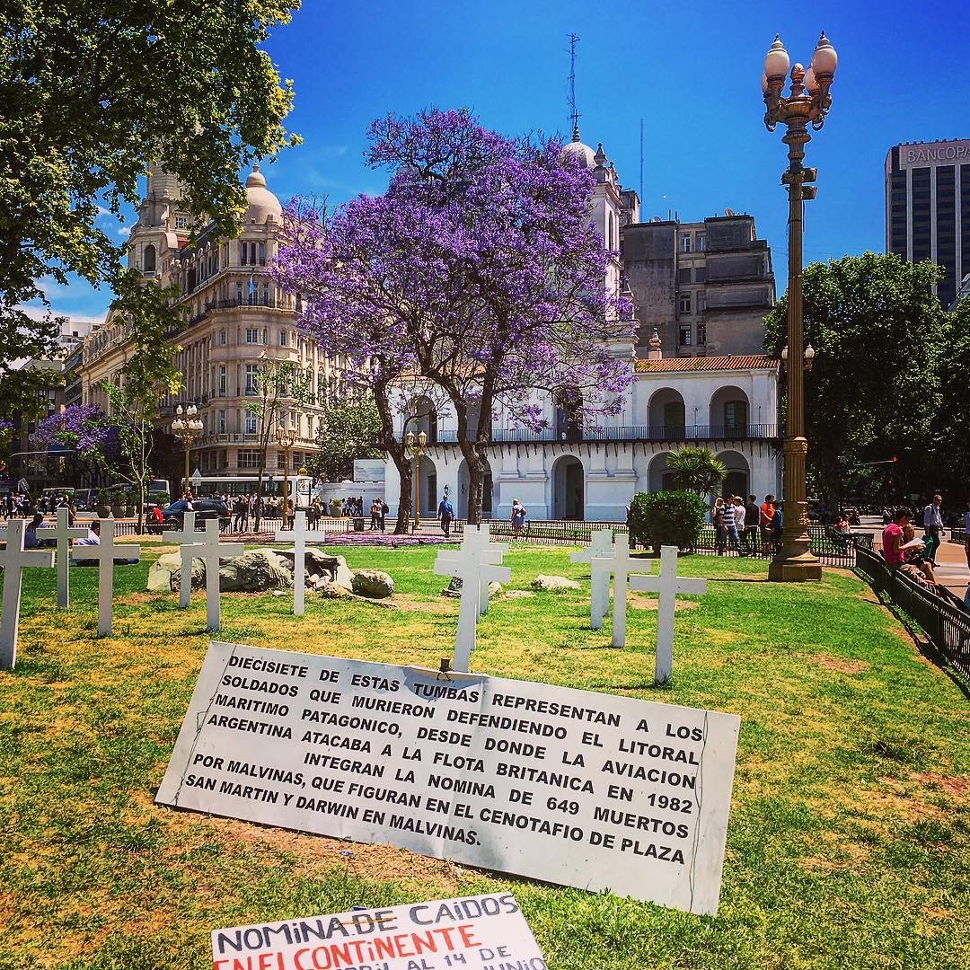 La guerre oubliée - Buenos Aires - Argentine. Sur la Place de Mai, ces croix représentent les soldats argentins tombés lors de la guerre des Malouines.