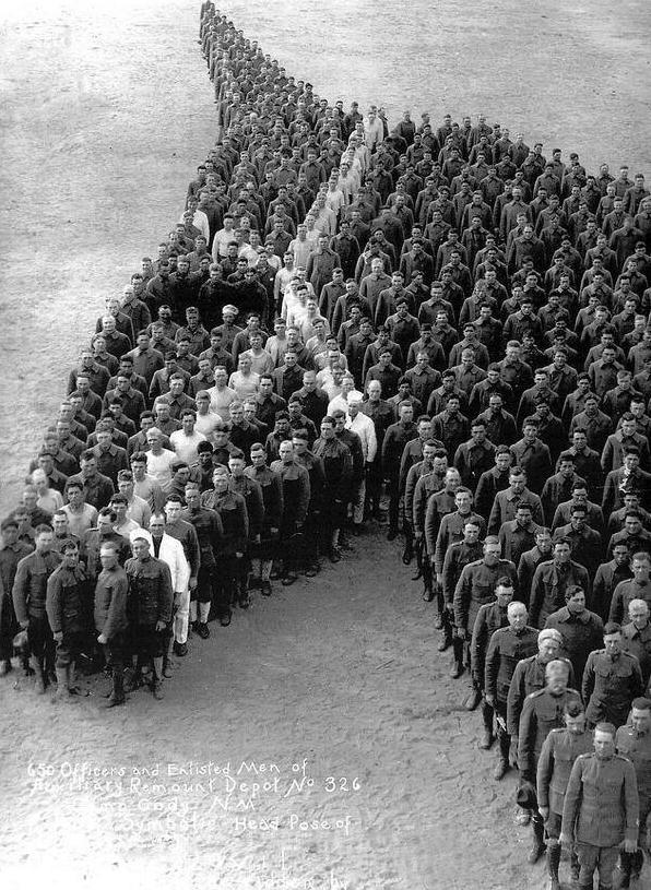 Tributo cavalli prima guerra mondiale