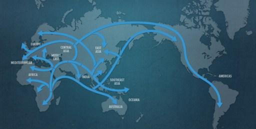 viaggio DNA