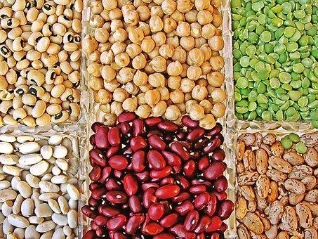 las proteínas vegetales