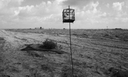 Jost Franko. Los agricultores palestinos de la franja de  Gaza