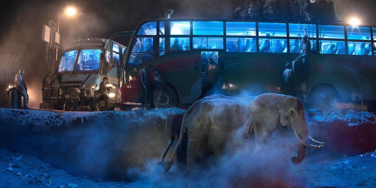 Nick Brandt,  la destrucción de los espacios de los animales en África