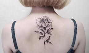 Rosa. Historia cultural de una flor. Claudia Gualdana