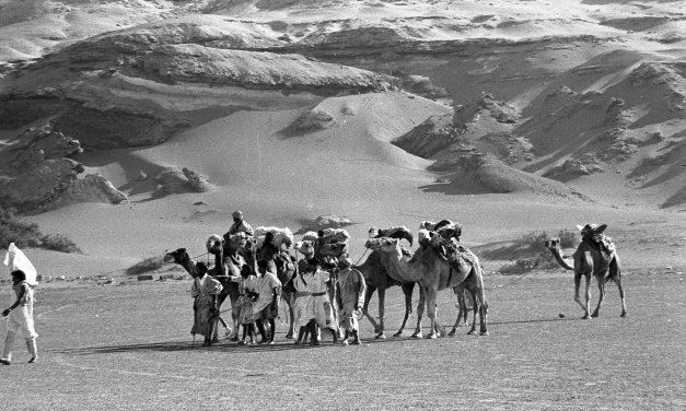 Dos libros de historia sobre lo que fuera Sahara español