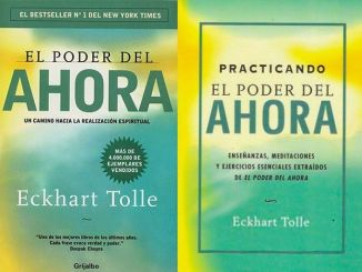 Practicando El Poder del Ahora, Libro de Eckhart Tolle