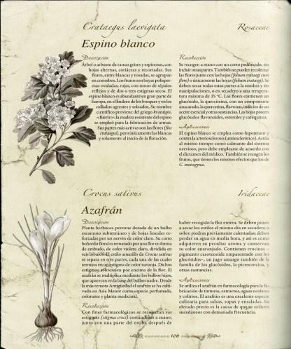 ATLAS ILUSTRADOS DE PLANTAS MEDICINALES Y CURATIVAS