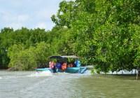 Wisata Hutan Mangrove Pandansari Brebes