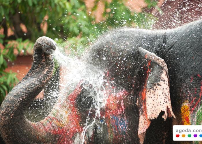 Bersiaplah untuk Merayakan Festival Songkran di Thailand! Yuk!