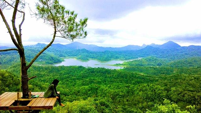 Siapa yang tidak suka dengan pemandangan di sekitar Kalibiru ini?