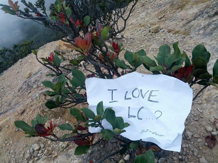 Kamu nggak cinta sama alam?