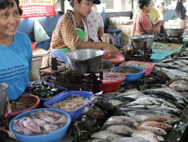 Ikan segar yang bisa di beli di dekat Pantai Depok Yogyakarta
