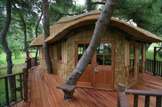 Rumah Pohon Yang Nyaman Untuk Liburan!