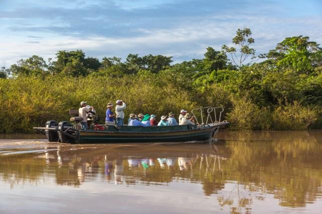 Mengarungi Sungai Amazon di Brazil (sumber)