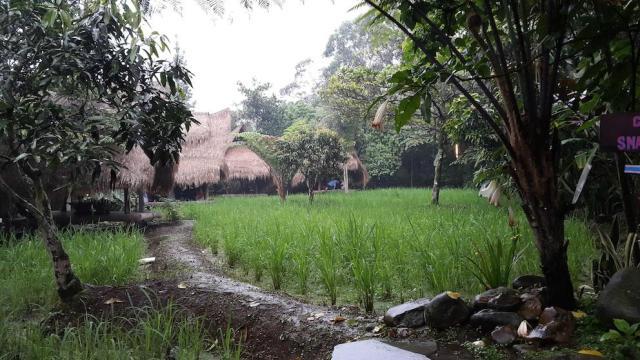 Sapu Lidi Resto Bandung
