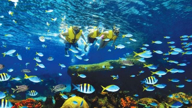 Ada banyak aktifitas yang bisa dilakukan di Sentosa Island