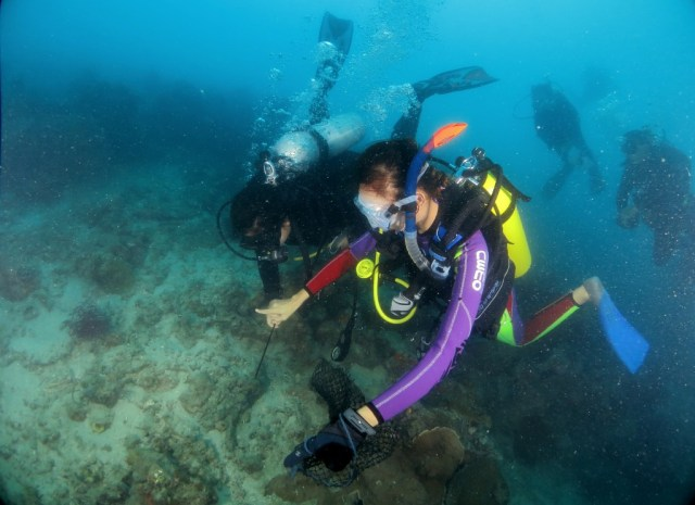 Diving in the Thousand Islands, Jakarta