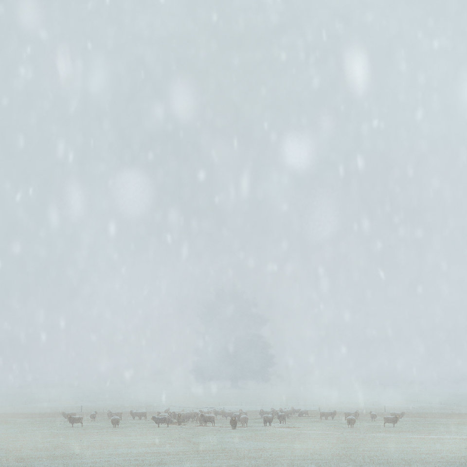 LUKE AUSTIN-THE INTERNATIONAL LANDSCAPE PHOTOGRAPHER OF THE YEAR-3