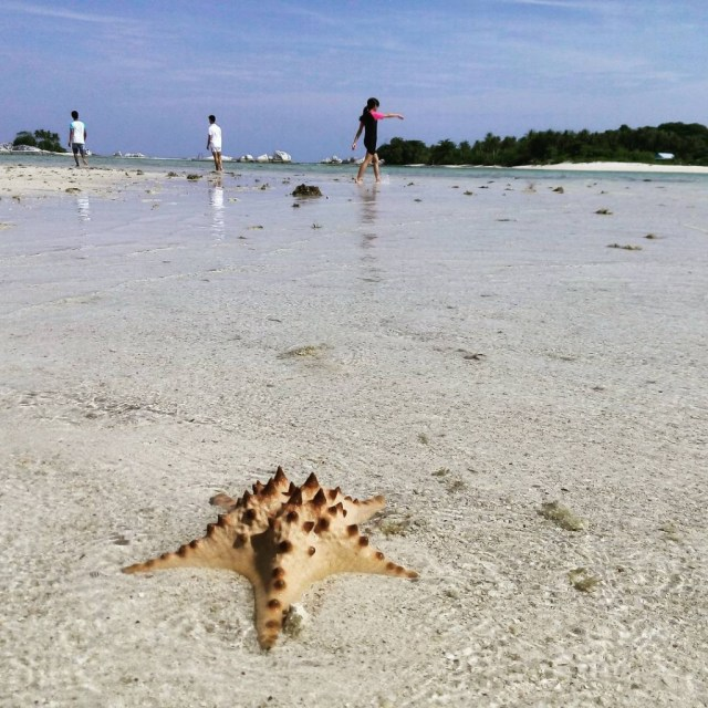 Pantai Pulau Gosong, Belitung