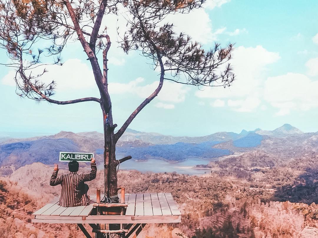 Desa Wisata Kalibiru Dengan View Pointnya Yang Membuat Dama Hati Tentu Harus Kalian Kunjungi Dong!