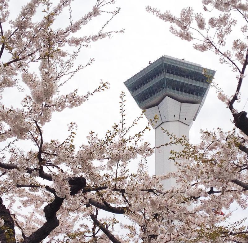 Goryokaku Tower, dari sini bisa melihat benteng Goryokaku dari ketinggian