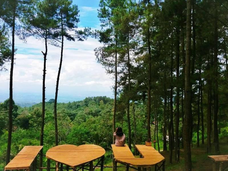 Bukit Penampihan ini berada di bumi perkemahan Sendang by @melaniabs