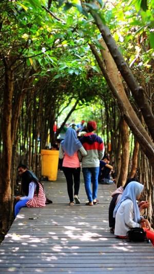 Wisata Mangrove Wonorejo ini menjadi tempat populer kawula muda