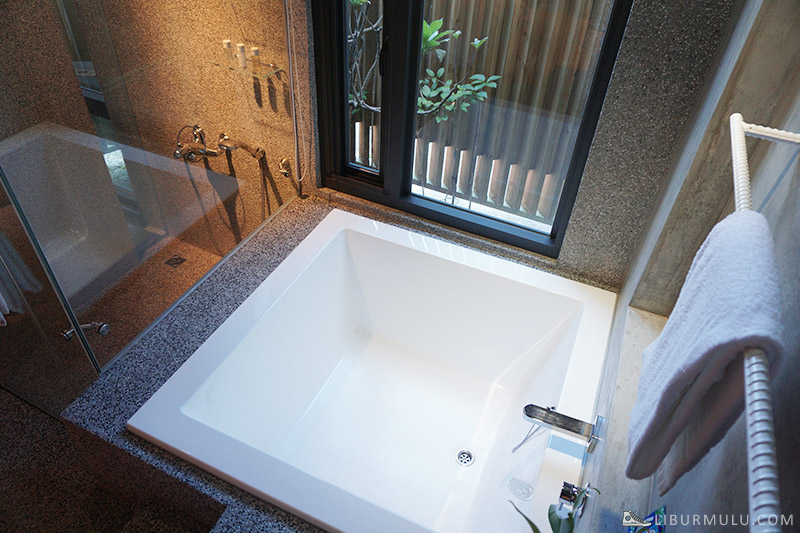 Bathub area bluebird