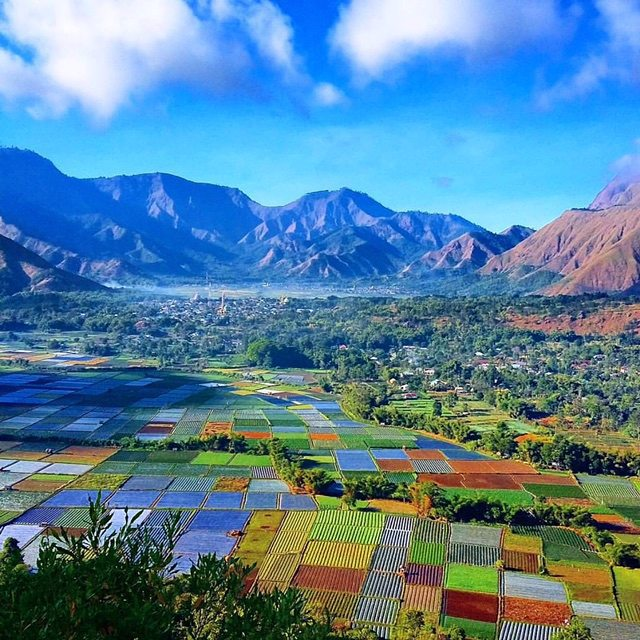 Bukit Pergasingan, Lombok, NTB